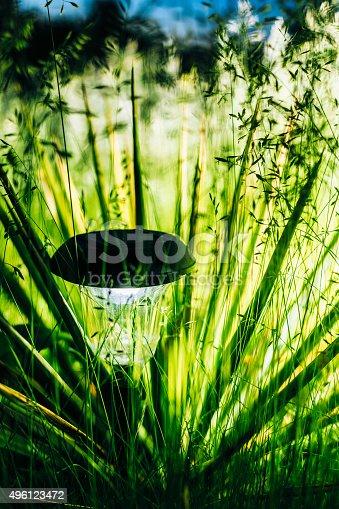 498598201 istock photo Small Solar Garden Light, Lantern In Flower Bed. Garden Design. 496123472