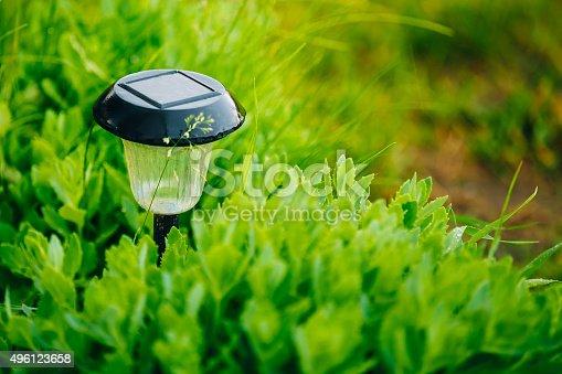 498598201 istock photo Small Solar Garden Light, Lantern In Flower Bed. Garden Design. 496123658