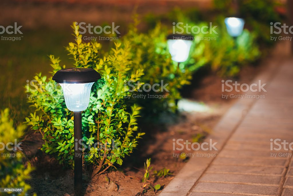 Small Solar Garden Light, Lantern In Flower Bed. Garden Design. stock photo