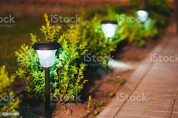 Photo of Small Solar Garden Light, Lantern In Flower Bed. Garden Design.