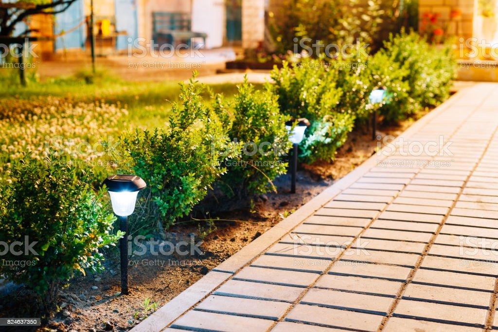 Petit Jardin Solaire Lumière Lanterne En Platebande Conception De ...
