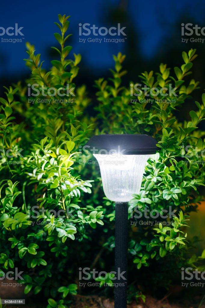 Small Solar Garden Light, Lantern In Flower Bed. Garden Design. Solar  Powered Lamp