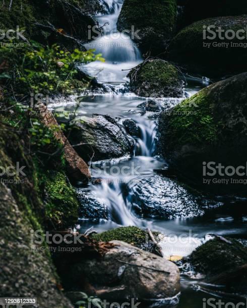 Photo of Small stream