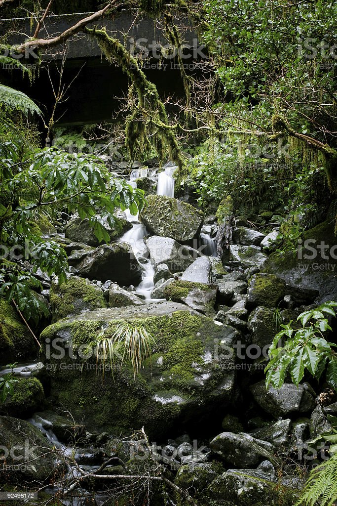 Small stream royalty-free stock photo