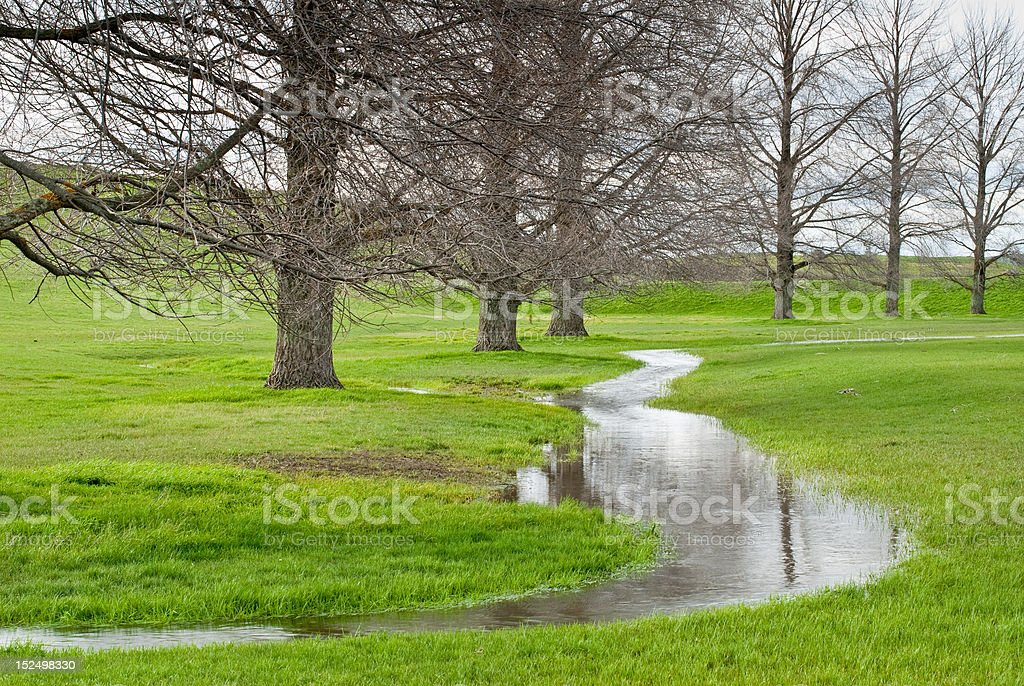 Small stream running through pasture by deciduous trees royalty-free stock photo