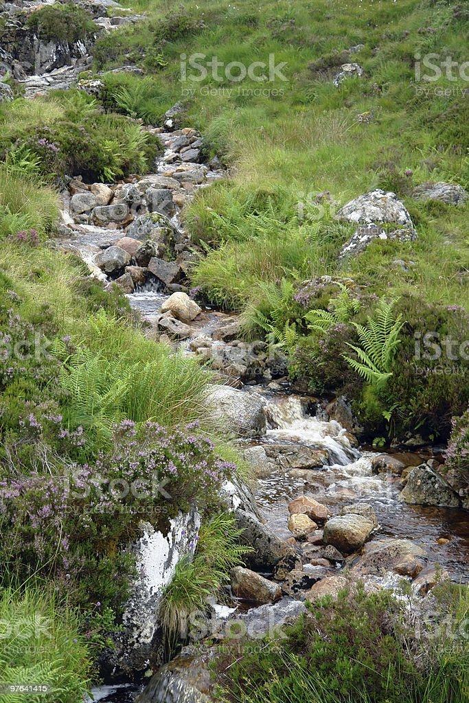 small stream with pebbles royalty-free stock photo
