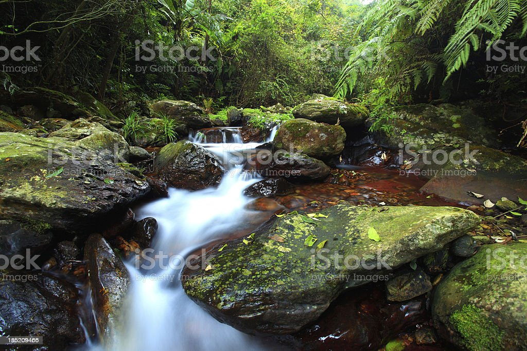 Small streams royalty-free stock photo