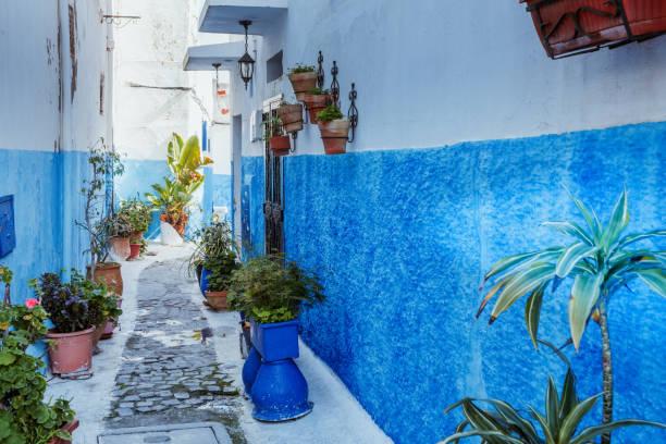små gator i blått och vitt i kasbah gamla staden rabat i marocko - rabat marocko bildbanksfoton och bilder