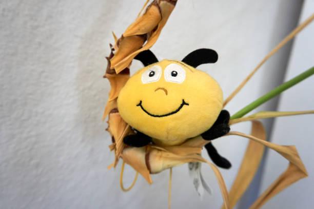 Small stuffed animal bee on a plant picture id1302839174?b=1&k=6&m=1302839174&s=612x612&w=0&h=m1yx7q92 1tkjuigqbcsavkiip34vlwwqnnis8qecgs=