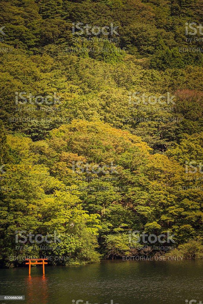 Small Torii in Lake Ashi. foto royalty-free