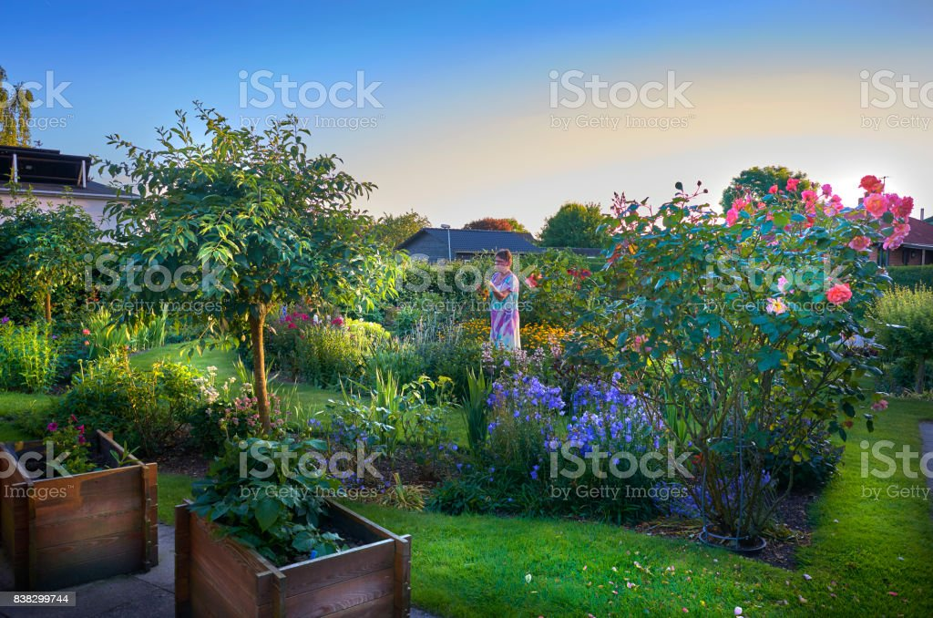 Small town garden late afternoon stock photo