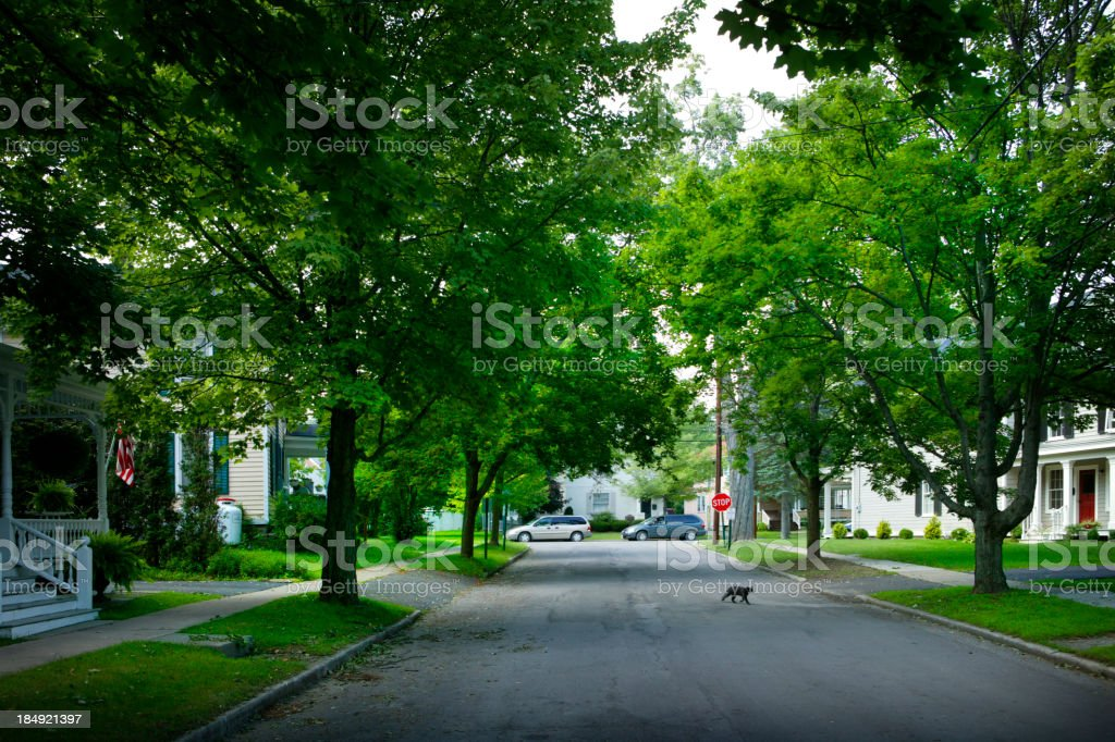 Small Town, USA stock photo