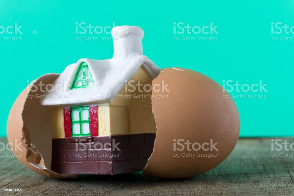 Small toy house in an egg shell royalty-free stock photo