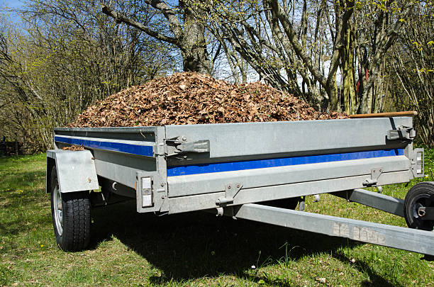Small trailer loaded with dry leaves Small trailer loaded with dry leaves when the garden is cleaned up at spring vehicle trailer stock pictures, royalty-free photos & images