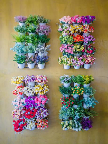 small tree and flower on flowerpot - rustikaler hinterhof stock-fotos und bilder