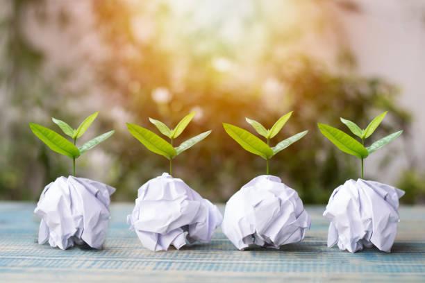 kleiner baum wachsen auf papier recycling konzept als welt-umwelttag wiederaufforstung eco bio arbor csr esg ökosysteme wiederaufforstung konzept sparen - papier recycling stock-fotos und bilder