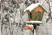 A small tree house in a snowy forest on a clear winter frosty day background
