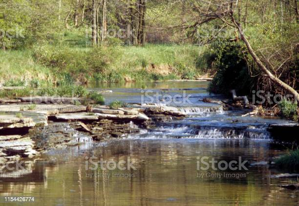 Photo of A small trickling stream with rocky banks
