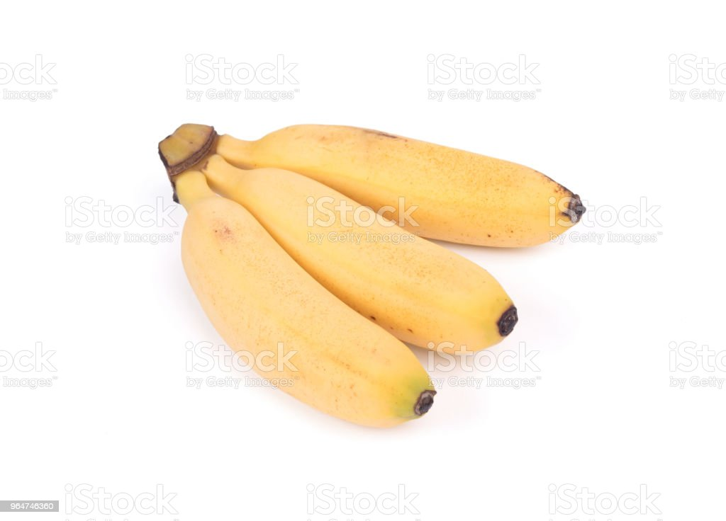 Small tropical banana cluster royalty-free stock photo