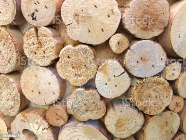 Small Trunks Of Natural Wood - Fotografias de stock e mais imagens de Círculo