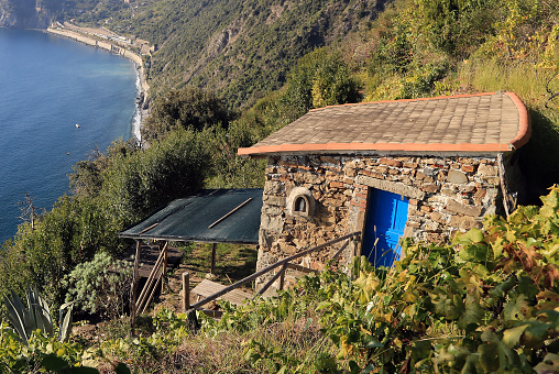 Small Vineyard House Above The Sea Stock Photo - Download Image Now