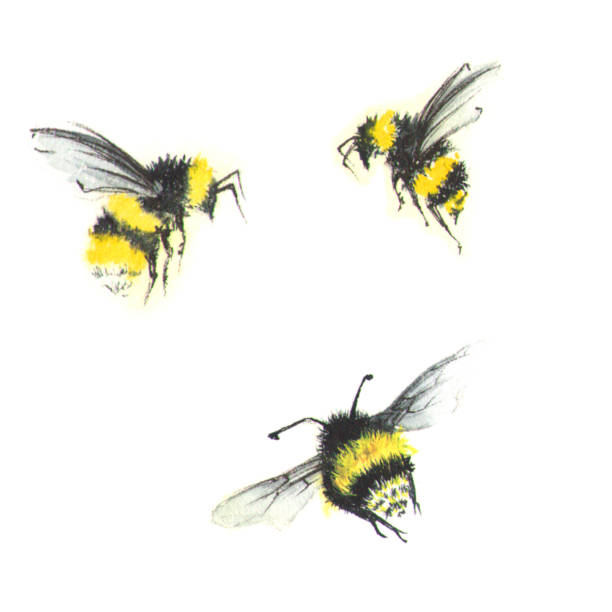 3 small watercolor bees stock photo