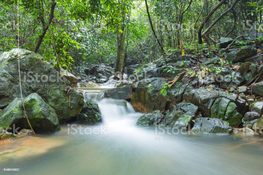 kleiner Wasserfall fließt. – Foto