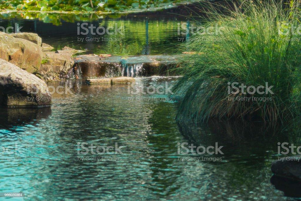 små vattenfall i en bäck omgiven av träd - Royaltyfri Berg Bildbanksbilder