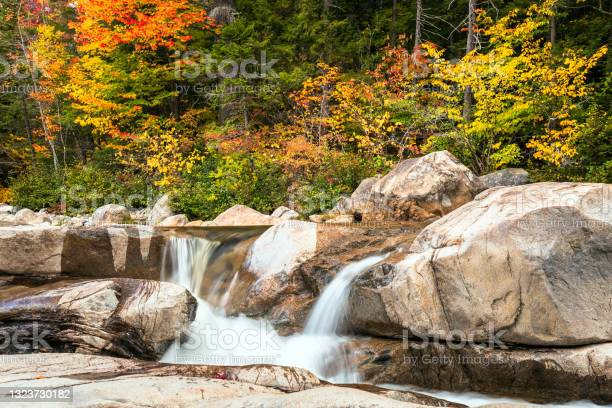 Photo of Small waterfall in a forest on a fall morning