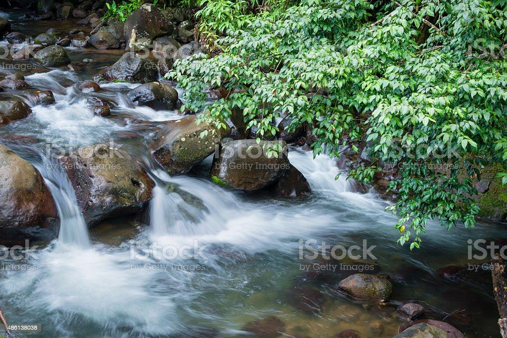XXXL: Small waterfall in a stream through tropical rainforest stock photo