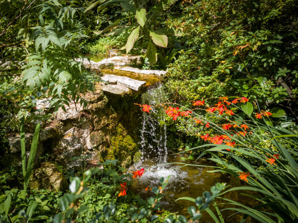 Small waterfall in a woodland stock photo