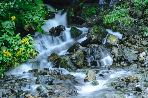 istock Small waterfall in Abkhazia 922764234