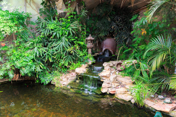 petite chute d'eau dans l'étang décoratif - fontaine photos et images de collection