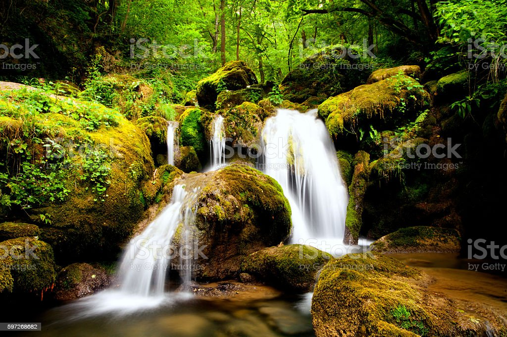 small waterfall in forests photo libre de droits