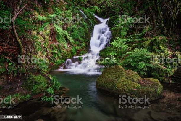Photo of Small waterfall in Peitieiros, Gondomar, Galicia, Spain
