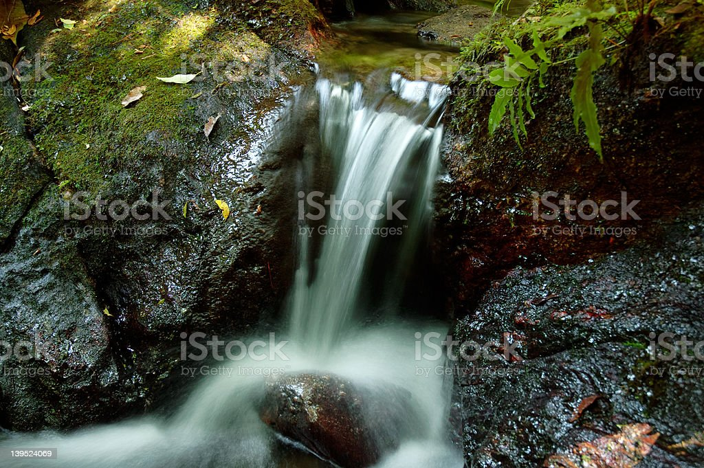 Small waterfall inside forest royalty-free stock photo