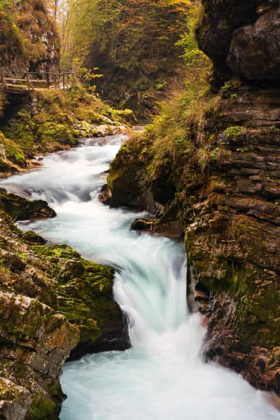 Small waterfall on Radovna river in the Vintgar gorge, Slovenia stock photo