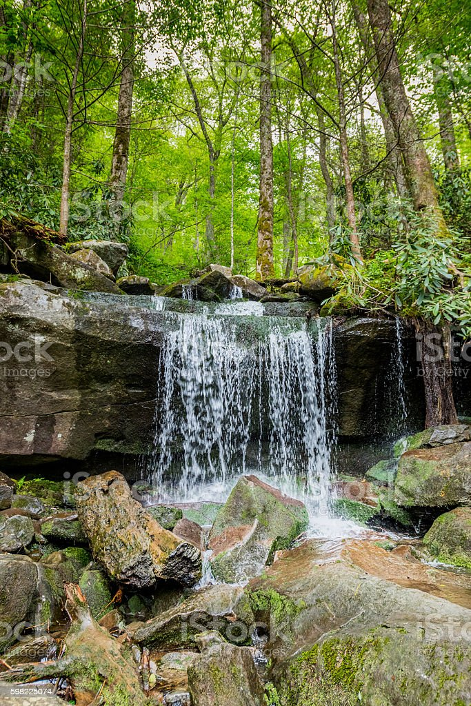 Small Waterfall on the Hike to Rainbow Falls foto royalty-free
