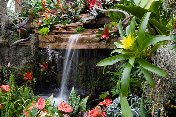 Small waterfall surrounded by red and yellow flowers stock photo