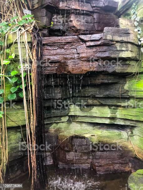 Photo of Small waterfall trickling down rocks
