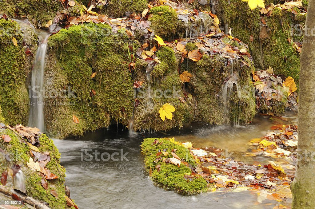 small waterfall with dead autumn leaves royalty-free stock photo
