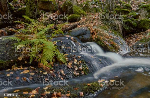 Small waterfalls in the sestil del mallo stream in the sierra de picture id1179534912?b=1&k=6&m=1179534912&s=612x612&h=2kxwylzcddm2mmrik0em1xg6py23w9jtf6 ewz694ws=