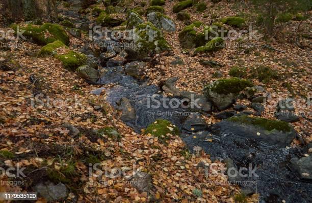 Small waterfalls in the sestil del mallo stream in the sierra de picture id1179535120?b=1&k=6&m=1179535120&s=612x612&h=p0uihwfalihknmfdwppbisehsg3yax49jlbvwpdwoji=