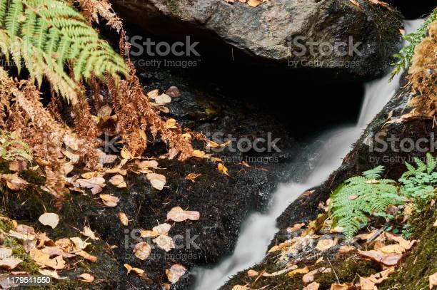 Small waterfalls in the stream of sestil del mallo sierra de park picture id1179541550?b=1&k=6&m=1179541550&s=612x612&h=uuvnsz0qqhfvnplbzplilld0sae4eukvd4tlxazaypy=