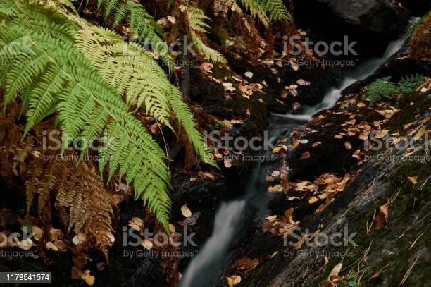 Small waterfalls in the stream of sestil del mallo sierra de park picture id1179541574?b=1&k=6&m=1179541574&s=612x612&h=a1lrwxyf6ranfhbisbmbhzqmuvctjujfc2wkizjr50q=
