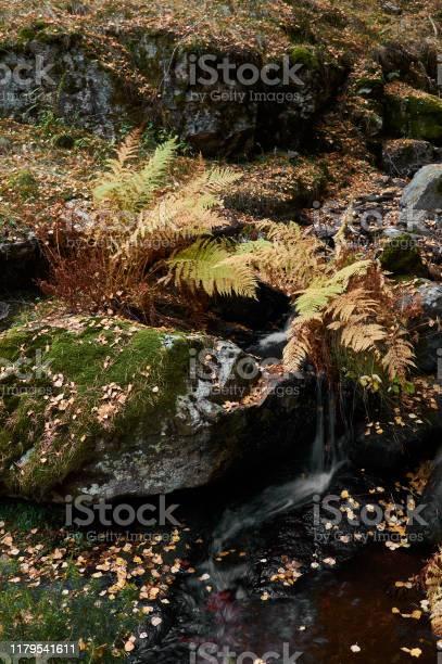 Small waterfalls in the stream of sestil del mallo sierra de park picture id1179541611?b=1&k=6&m=1179541611&s=612x612&h=hx5l4wanpjzscoqy tbqtksqey1avwtoks5luv5e7qm=