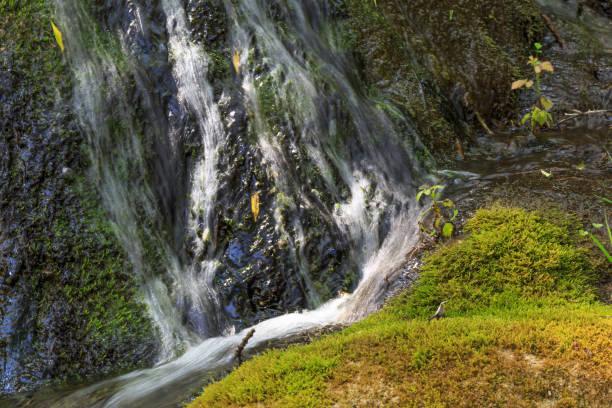 Small waterfalls. stock photo