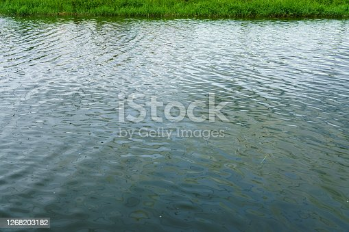 Small waves of water surface in the pond