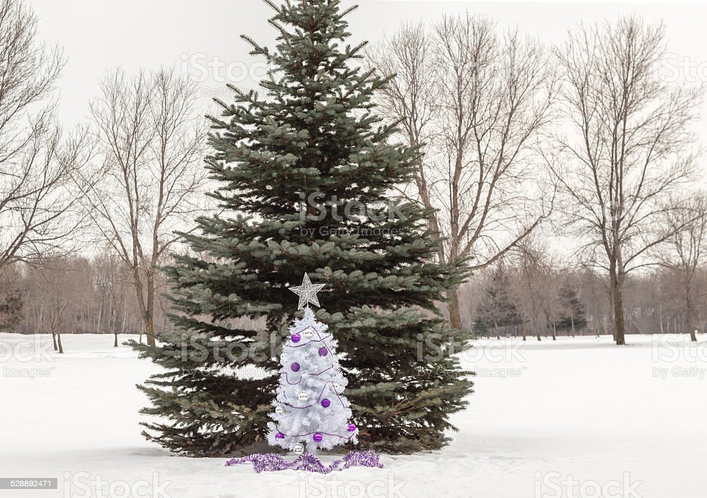 small white christmas tree with purple and silver decorations stock photo download image now istock https www istockphoto com photo small white christmas tree with purple and silver decorations gm528892471 53664658