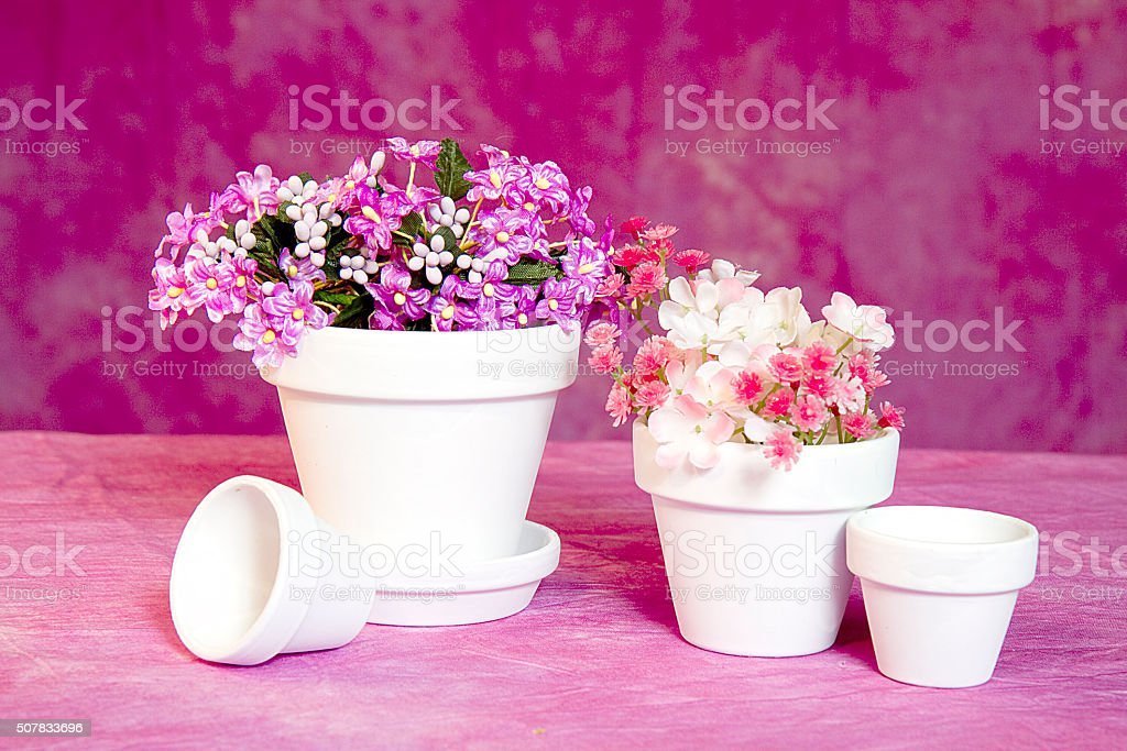 Small White Flower Pots And Flowers On Pink Stock Photo More